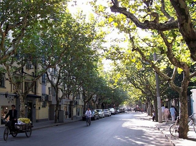 Old French concession