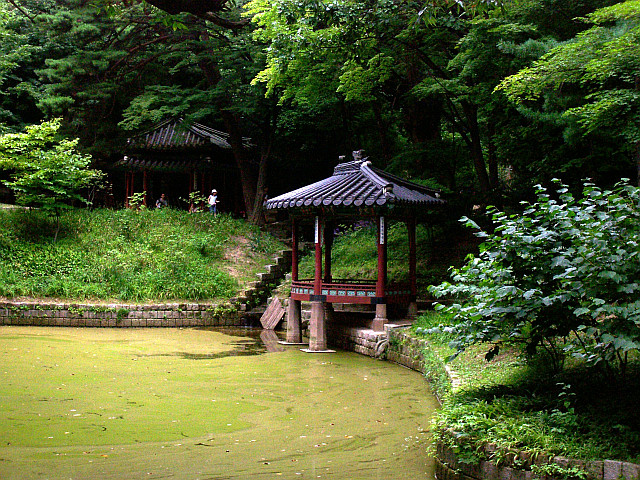 Changdeokgung palace - Pavilion under trees and in front of a pond