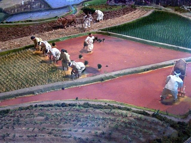 Yong-in folk village - Model on the transplanting of rice.