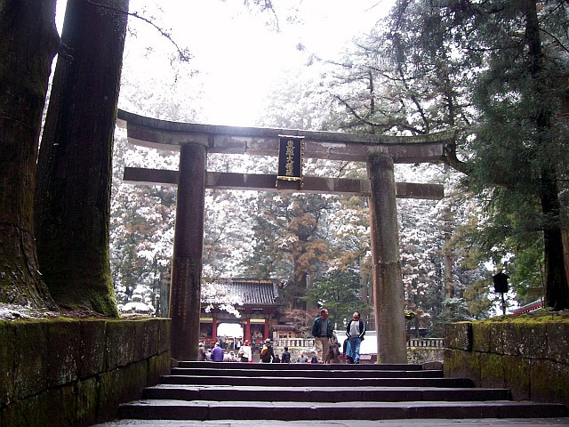 Toshogu shrine - Torii