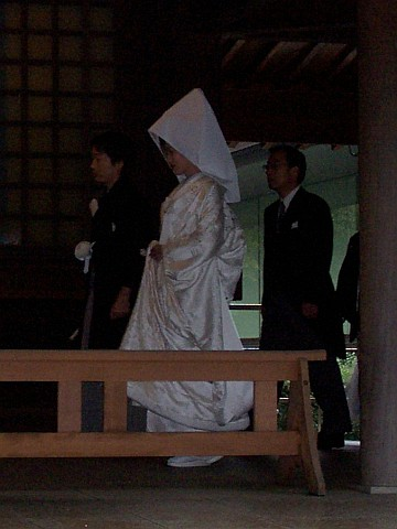 Meiji shrine - Wedding