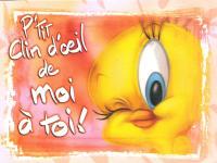 loracle gé des domaine Titi-00645-vignette