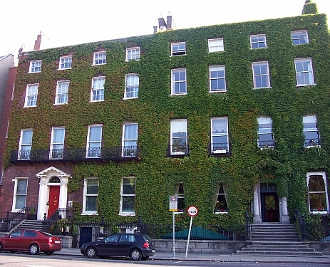 Dublin georgian house covered with ivy