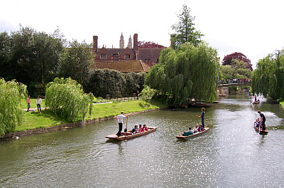 Punts on river cam