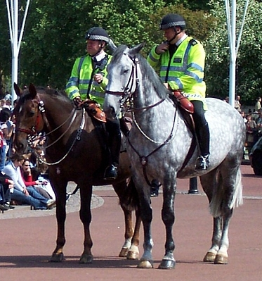 Buckingham palace - Mounties