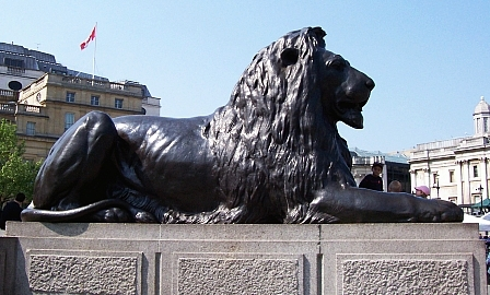 Trafalgar square - Bronze lion at the foot of Nelson's Column