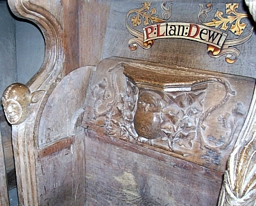 St David Cathedral - Misericord