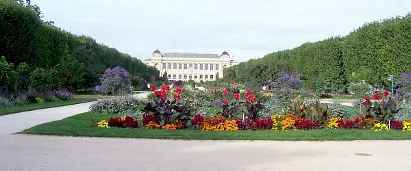 Photo jardin des plantes for Jardin des plantes chambery